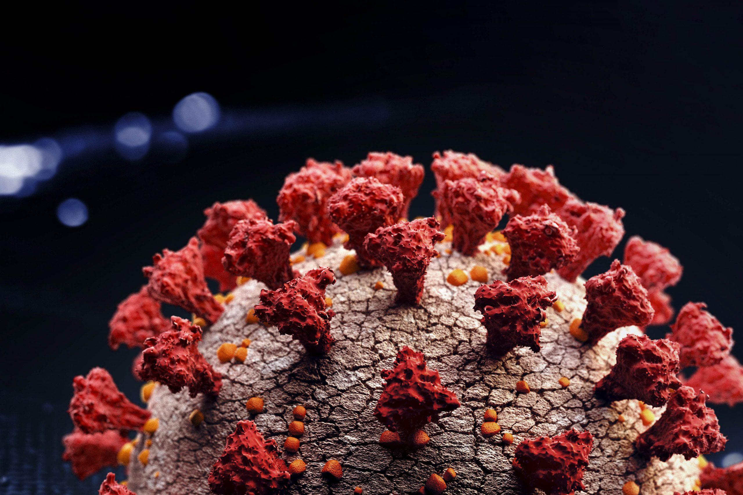 ey illustration of a corona virus cell v2 scaled