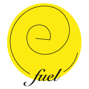 the efuel efn corporation efln has expende business in usa and europe