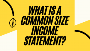 What is a common size income statement